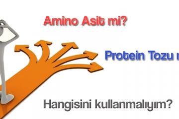 amino-protein-farki