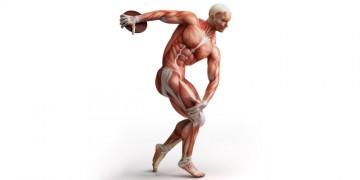 protein-tozu-ve-kas-yapmak