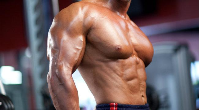 Triceps 3