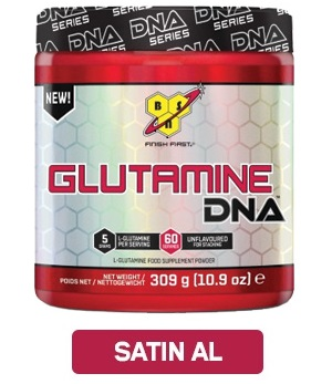 bsn_dna_glutamine44
